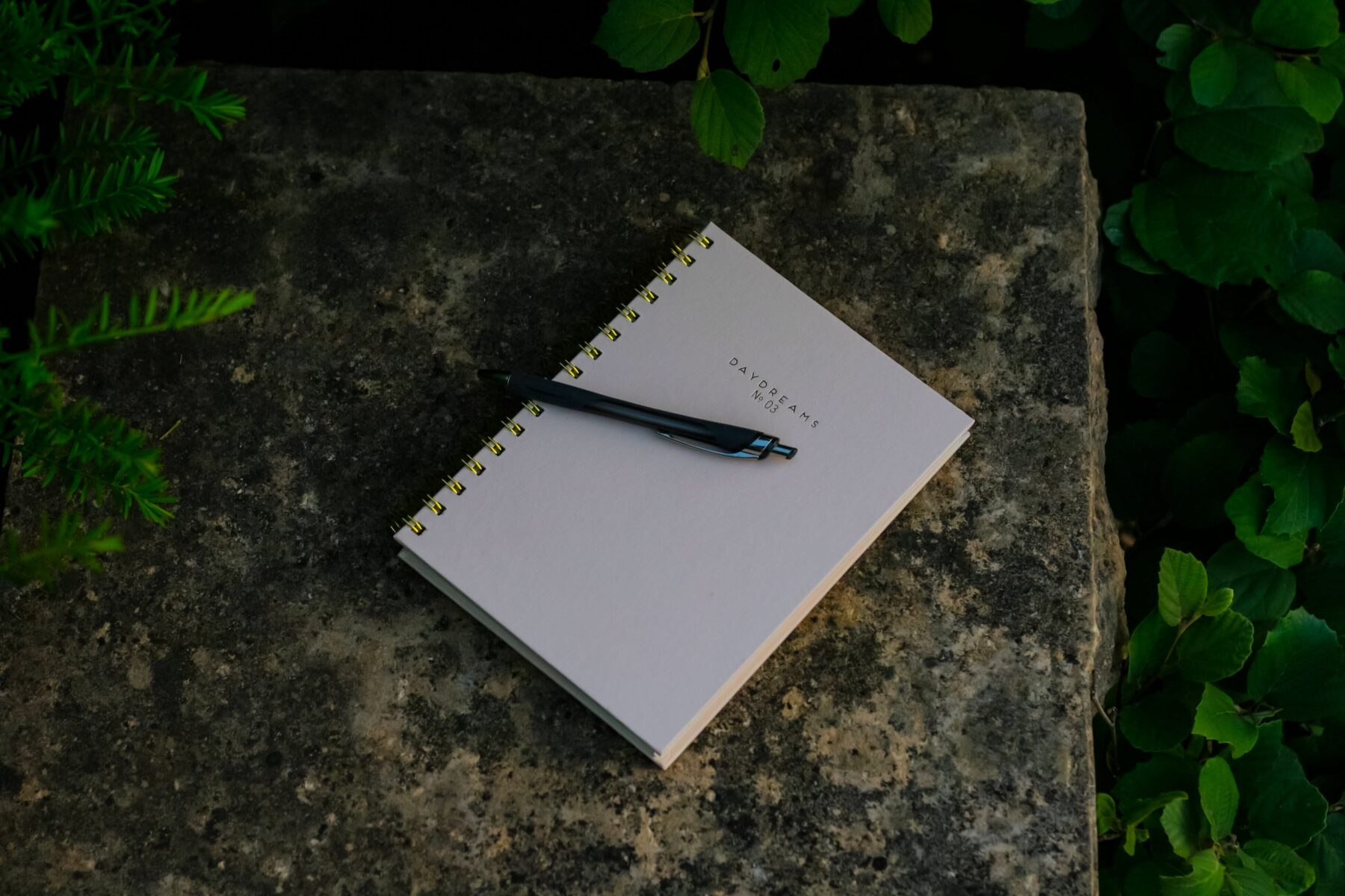 nawyki-blog-minimalizm
