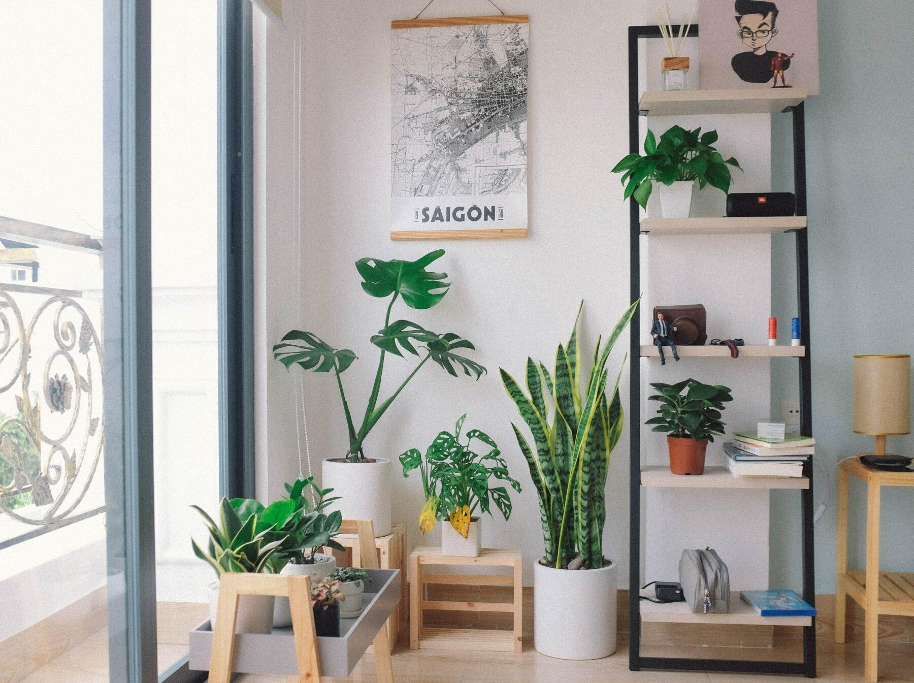 pułapki-minimalizmu-blog